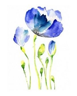 Transfer TELA Watercolor 25x35 FLORES - AMAPOLA AZUL