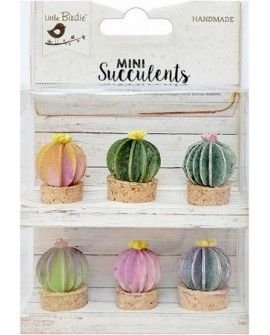 Mini Suculents - BARREL CACTUS