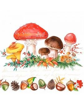SERVILLETAS MUSHROOMS
