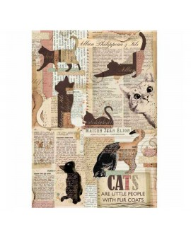 PAPEL DE ARROZ A4 CATS